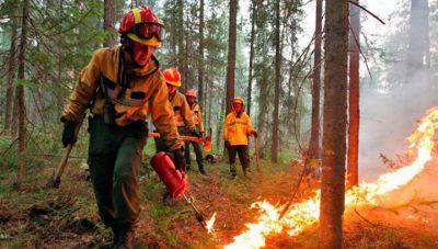 Способы защиты от природных пожаров