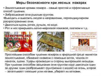 Требования безопасности при тушении лесных пожаров